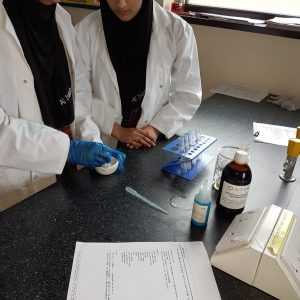 KS4 Science Practicals